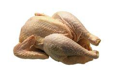 pollo-contaminado