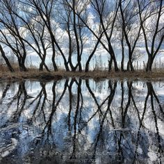 """Photograph by @JohnStanmeyer  Farmers pond, silently veiled in trees, at a village on the outskirts of #Gyumri, #Armenia.  Yesterday was a time of deep…"""