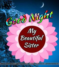 good night stster wishes Good Night Sister, Good Night I Love You, Good Morning Good Night, Good Night Quotes, Morning Quotes, Good Night Greetings, Night Wishes, Good Night Massage, Beautiful Good Night Images