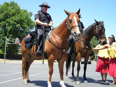 Mounted Police Horse - Police Horse Tack