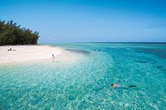 Heron Island www.parkmyvan.com.au #ParkMyVan #Australia #Travel #RoadTrip #Backpacking #VanHire #CaravanHire