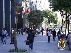 TURISMO EN CIUDAD JUÁREZ ¿Qué hay actualmente en la avenida Juárez? Establecimientos muy diversos desde joyerías, restaurantes, clubes, hoteles, bares, discotecas, viviendas de alquiler y diversos servicios profesionales se encuentran ahí. www.turismoenchihuahua.com
