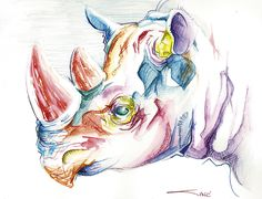 Colorful Rhino Head by sinccolor.deviantart.com