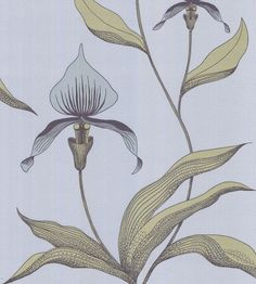 Orchid Wallpaper by Cole & Son | Jane Clayton