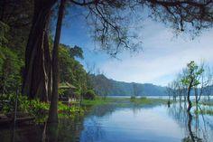 Tamblingan Lake  Address: Desa Munduk, Kecamatan Banjar, Bali. Coordinates here