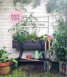 Tips ::: Sådan laver du en urban have - MeltdesignstudioMeltdesignstudio