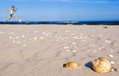 Poland - Hel. Mierzeja Helska, najdłuższy polski półwysep, to przepiękne plaże, zdrowy klimat i uroki zacisznych rybackich miasteczek. Można tu spacerować, przesiadywać w knajpkach, wylegiwać się na drobnym, jasnym piasku i jeść pyszne ryby, a także odwiedzić helskie fokarium.
