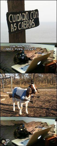 Cuidado com as cabras