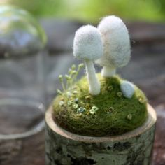 Needle felted terrarium by lil fish studios.