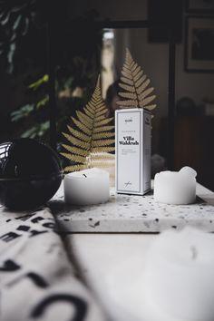 #interiordesign #homeaccessories #homedecor #designobjects #objetsdart #madeineurope #sustainablymanufactured #carefullycurated #interioraccessories #sellerievienna #shopsofvienna #fromviennawithlove #diesellerie #bienvenuestudios #risograph #fineartprint #ceramics #uhlalaceramics #terrazzo #sellerieviennacollection #naschmarktundvillawaldruh #naschmarkt #vienna #wien #seiferei #stillleben #stilllife #stilllifephotography Terrazzo, Fern Living, Lokal, Objet D'art, Vienna, Have Fun, Ceramics, Table Decorations, Home Decor
