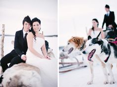 sleigh dogs and ice castle winter wedding in sweden