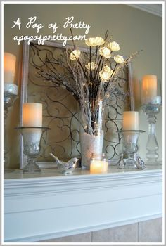 LOVE THE SILVER BIRDS AND GLASS CANDLE HOLDERS!!!  DSC_2307
