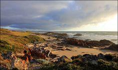 Arthur River beach in North West Tasmania