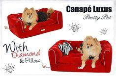 1000 images about panier canap couverture et cuddle cup chien sweetie dog. Black Bedroom Furniture Sets. Home Design Ideas