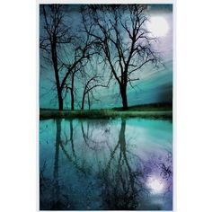 Night sky,11x17inches, Michigan photography, Original, Lake House... (€70) ❤ liked on Polyvore featuring home, home decor, wall art, backgrounds, tree home decor, photographic wall art, winter trees, photo wall art and tree wall art