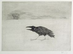 Paul Flora Flora, Moose Art, Birds, Crows, Foxes, Drawings, Illustration, Whimsical, Animals