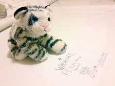 Wash Me, Please! A note from my daughter's stuffed tiger.