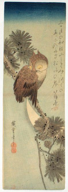 Ichiryusai Hiroshige / Small Brown Owl