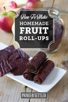 Homemade Fruit Roll Ups | 15 Dehydrator Recipes To Make This Weekend