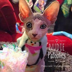 "Christmas Pink Penguin Fleece ""On Santa's Cute List"" Sphynx, Devon Rex, Peterbald, cat clothes, cat sweater, cat shirt!"