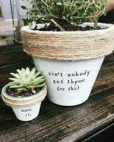 Cute puns to stencil onto your potted plants!