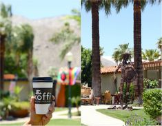 Koffi in Palm Springs // My SoCal'd Life, a lifestyle blog