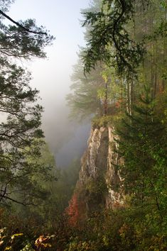 Autumn in Siberia, Russia