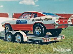 Funny Car Drag Racing, Nhra Drag Racing, Cool Car Pictures, Stock Pictures, Toy Hauler Trailers, Ford Maverick, Car Carrier, Old Race Cars, Drag Cars
