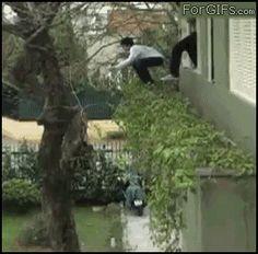 Cette personne qui n'aurait pas dû sortir par la fenêtre. | 38 personnes qui en ont marre de cette journée de merde