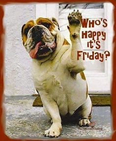 Happy Friday Friends! ☕