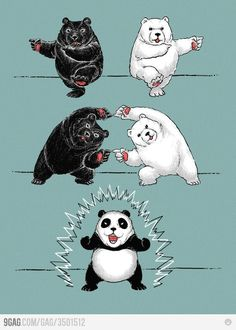 This is how panda bears is made