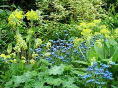 Cottage Garden Design | Helen Shaw - Garden Designer