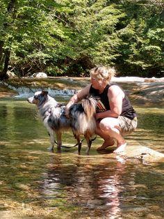 Puppy Sitting, Puppies, Couple Photos, Nature, Travel, Couple Shots, Cubs, Naturaleza, Viajes