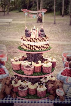 the DIY cake stand. Three MDF rings decorated with faux grass from Bunnings, red gingham ribbon, tree branches cut to suit