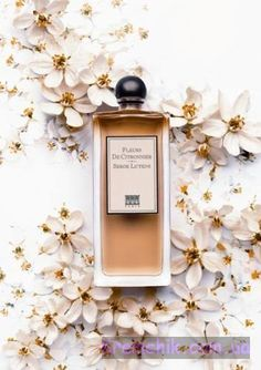 Fleurs de Citronnier by Serge Lutens. Summer morning orange blossom.