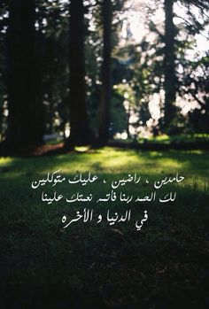 Arabic Quotes, Islamic Quotes, Quran Verses, English Quotes, Funny Posts, Proverbs, Meditation, Peace, Feelings