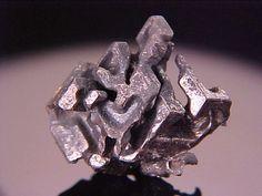 Hessite with Native Gold  Botes, Alba Co., Romania  2.14cm x 2cm x 1.5cm