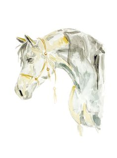 White Horse Original Illustration  Watercolor Painting by MundoMeo, $14.00