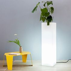 Vaso Mod' or 95 by plart design -  Vase top column available also in the illuminated version.