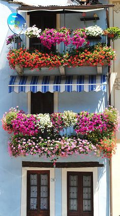 Beautiful window gardens  in Bolzano, Trentino-Alto Adige, ITALY