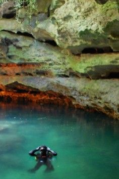 Florida's Pre-historic Underground Spring Devil's Den Resort & Springs - One of North America's most prehistoric places, Devil's Den, an underground spring inside a dry cave in central Florida. The remains of many extinct animals from the Pleistocene Age (2 million - 10,000 years ago) were discovered at Devil's Den, including the bones of early man, dating back to 75,000 B.C.
