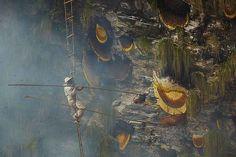"""Come viene prodotto un documentario del National Geographic """"The Last Honey Hunter"""",tradotto in """"L'ultimo cacciatore di miele"""", è un documentario che National Geographic ha commissionato in questi giorni a Renan Ozturk, fotografo e videomaker esperto in arram #fotografia #video #national #documentari"""