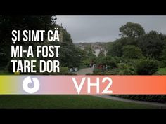 VH2 - Dor de voi (Official Lyric Video)