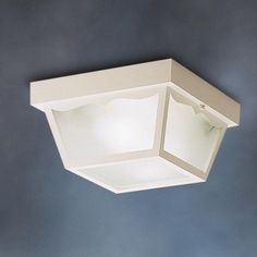 Outdoor 2 Light Flush Mount