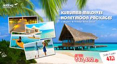 Maldives Tour packages - Customized Kurumba Maldives Honeymoon Packages are what. Maldives Honeymoon Package, Maldives Packages, Maldives Tour Package, Honeymoon Packages, Vacation Packages, Maldives Tourism, Maldives Travel, Maldives Holidays, Romantic Honeymoon
