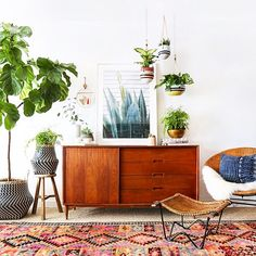 Indoor plant Heaven #interiorinspo #interiordesign #interiorstyling #interiordecorating #vintage #kilimrug #indoorplants #hangingants #fiddleleaffig #sideboard #artwork #sharemystyle #baskets #storage #sheepskin #instastyle @amberinteriors