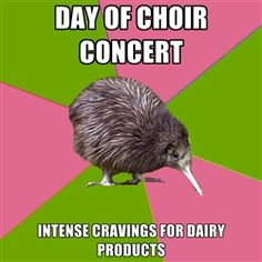 Choir Kiwi - Day of choir Concert Intense cravings for dairy products