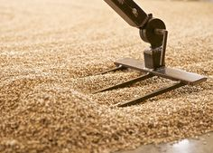 Here's a quick base malt listing, complete with descriptions and comparisons. This guide will help you understand the difference between each base malt. Beer Ingredients, Home Brewing Beer, Homebrewing, How To Make Beer, Craft Beer, Brewery, Making Beer, Product Description, Desserts