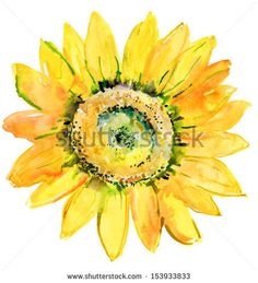 Watercolor background -Sunflower- - stock photo