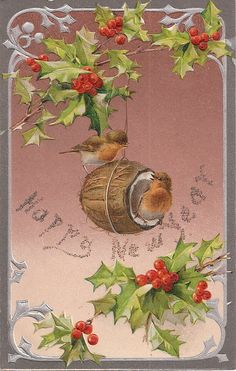 """Robins in Nest """"Happy New Year"""" Antique Postcard"""